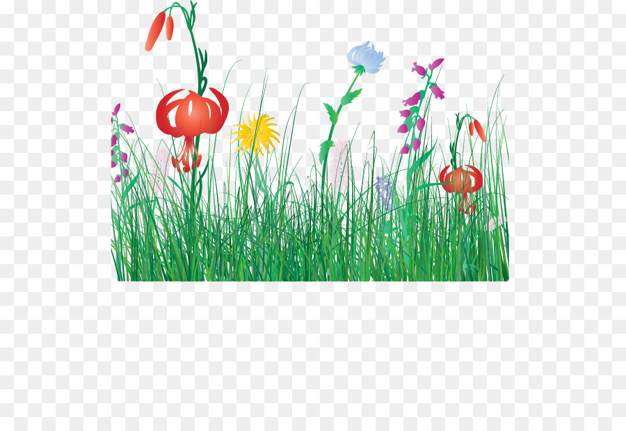 Flower Cartoon Clip art - Cartoon spring flowers fresh grass png