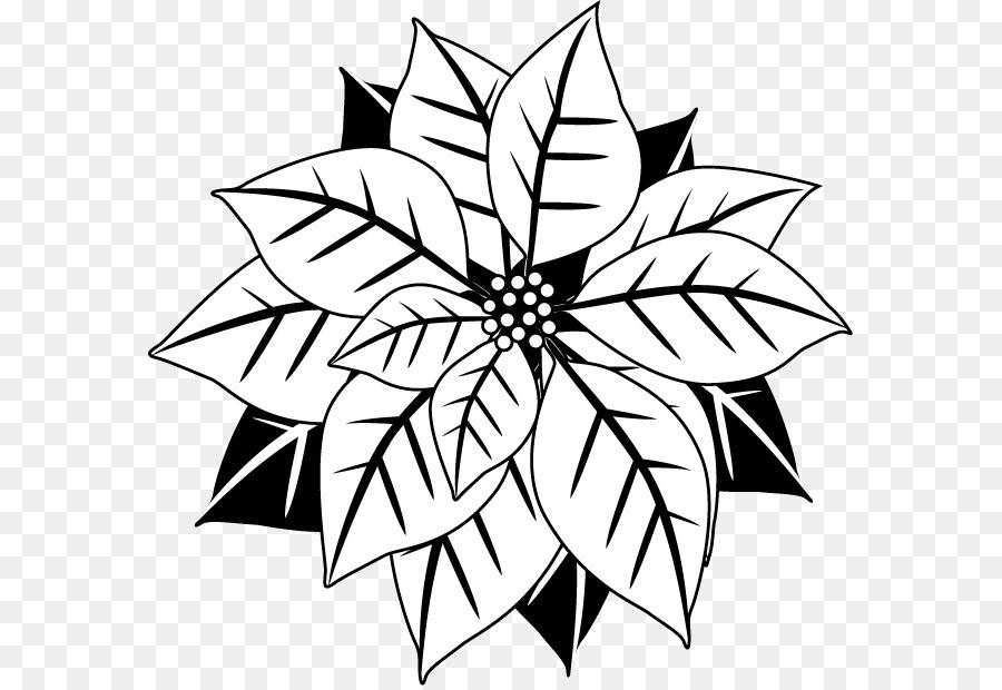 Poinsettia Christmas Black and white Flower Clip art - Poinsettia