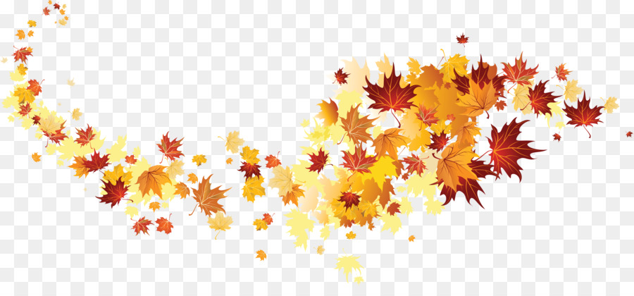 Wallpaper Hd Happy New Year Autumn Leaf Color Autumn Leaves Png Download 5987 2704