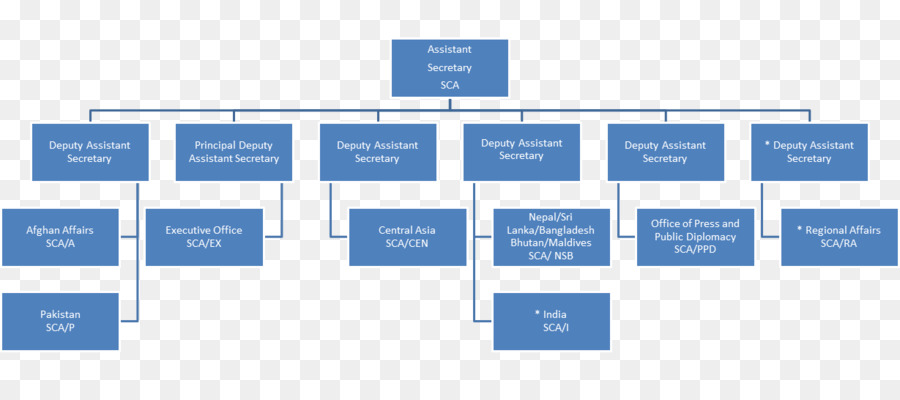 Organization Chart Bureau of South and Central Asian Affairs - project organization chart