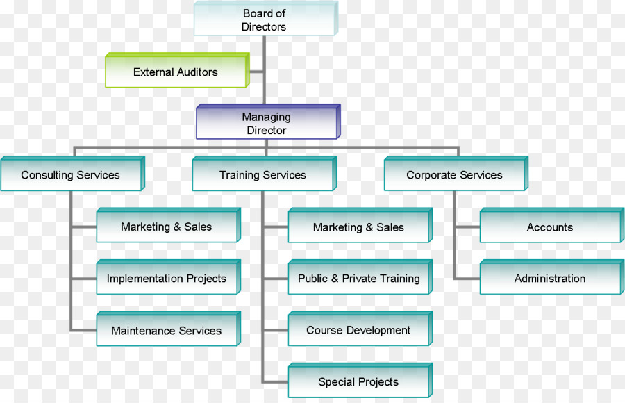 Organizational chart Business Organizational structure Company