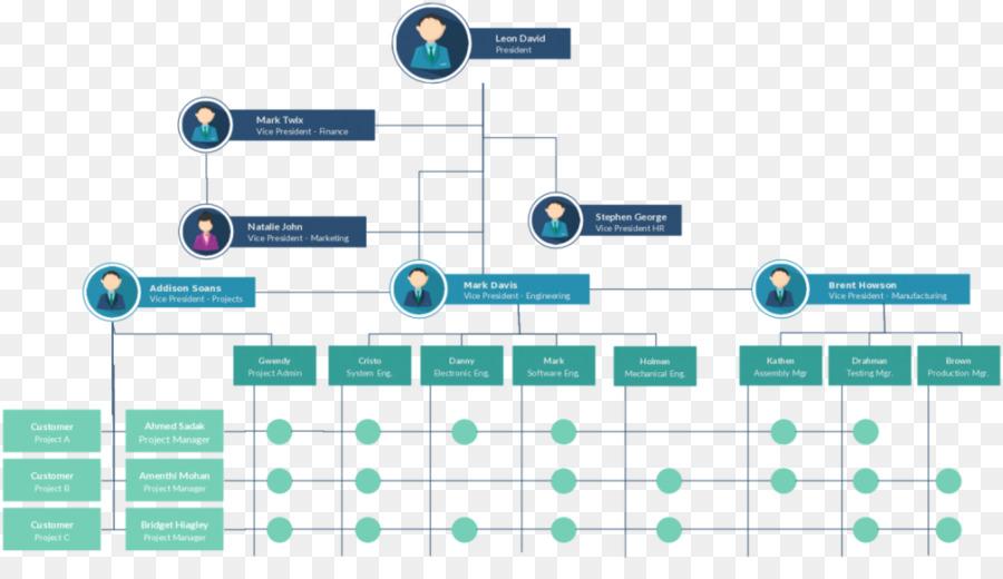 Organizational chart Matrix management Organizational structure