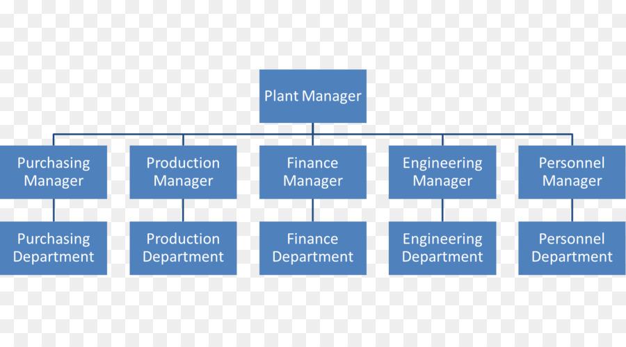 Organizational structure Hierarchical organization Organizational