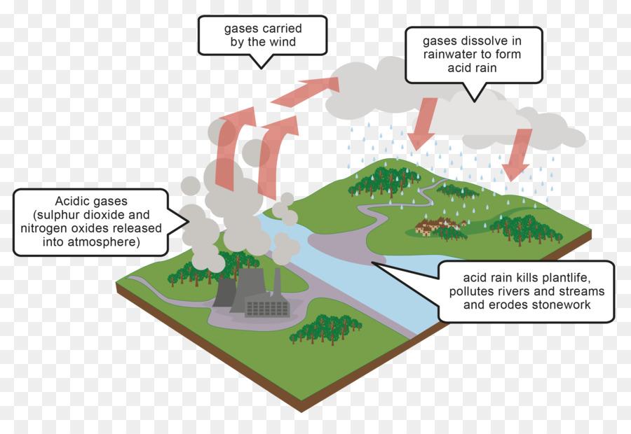 Acid rain Diagram Air pollution - rain effects png download - 2396