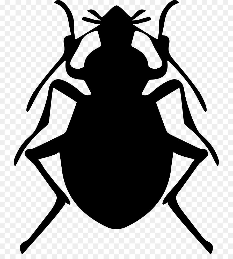 Floh Im Bett Bed Bug Biss Bed Bug Control Techniken Matratze Bett Png