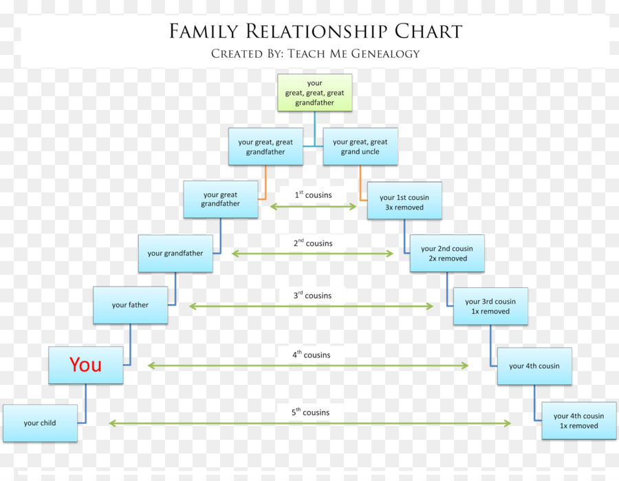 Family tree Genealogy Cousin Chart - Family png download - 1600*1228