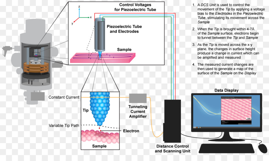 Scanning tunneling microscope Microscopy Quantum tunnelling Scanning