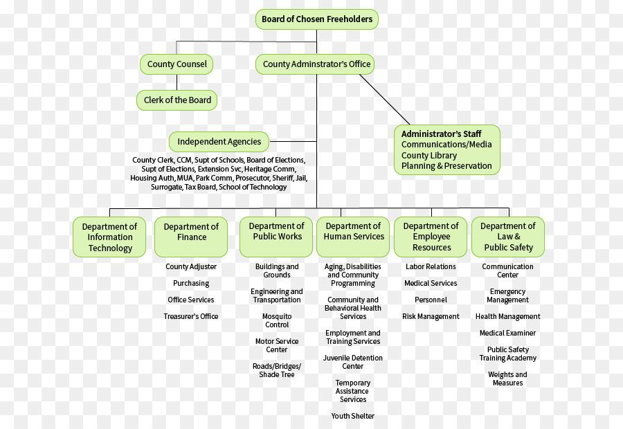 New Jersey Organizational chart Non-profit organisation