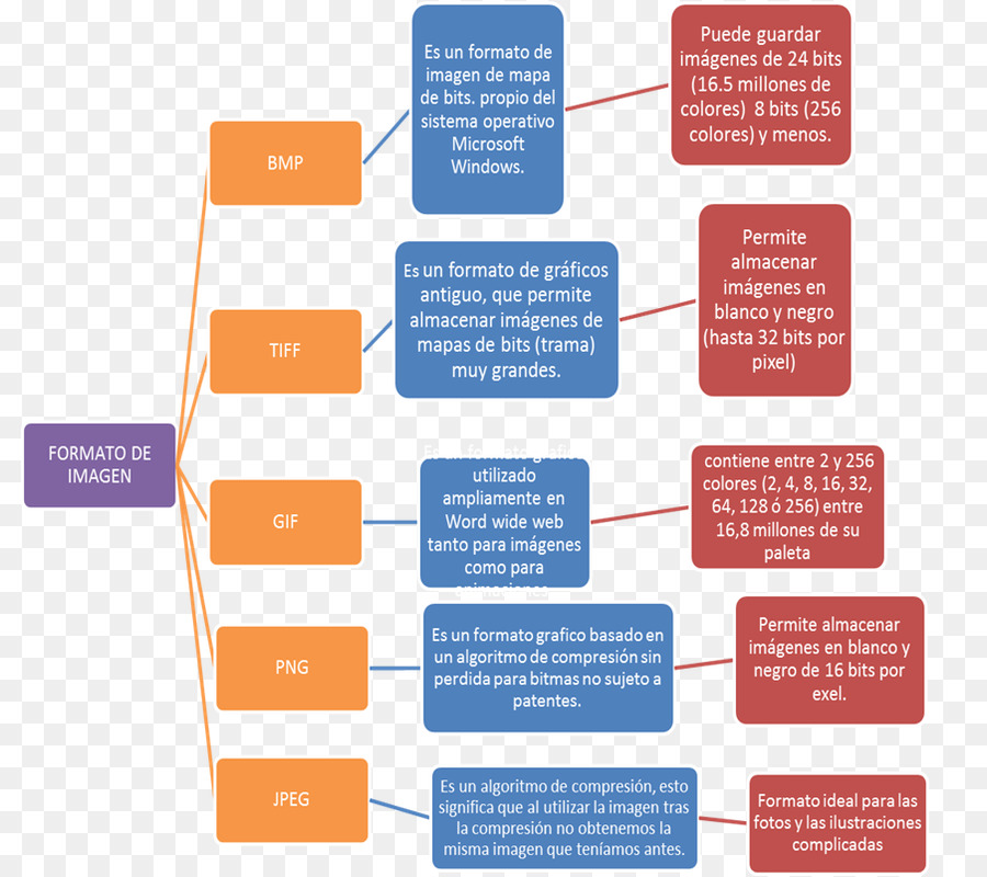 Diagram Microsoft Word Microsoft Office Chart - microsoft png