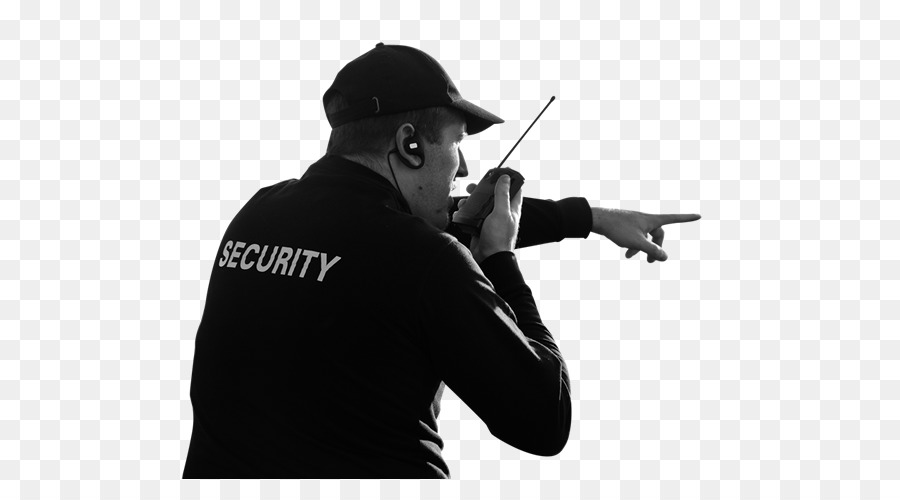Security company Chief Security Officer Surveillance Supervisor