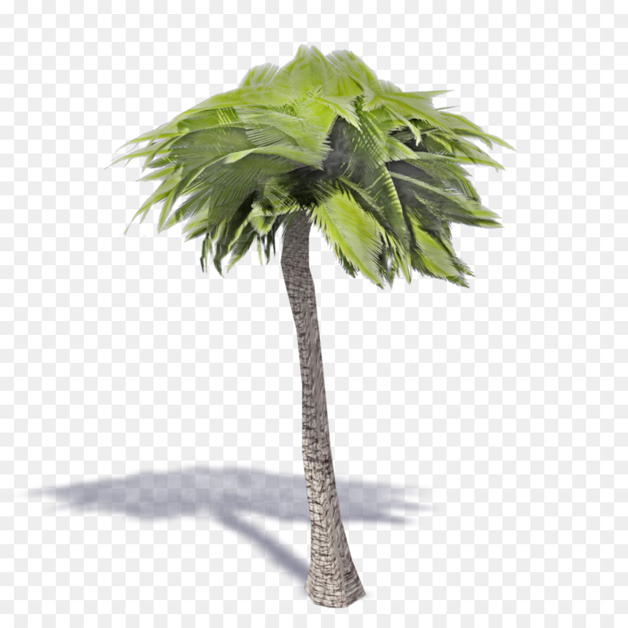 Ikea Palm Tree Asian Palmyra Palm Flowerpot Ikea Family Artificial Flower