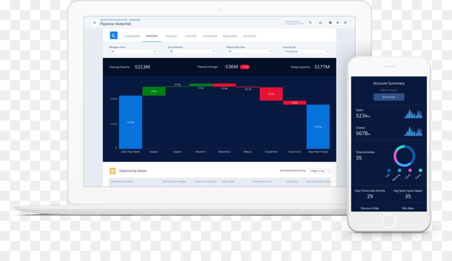 Dashboard Computer Software Salesforce Application software
