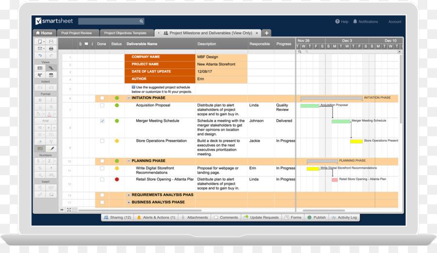 Deliverable Computer program Template Project management Milestone