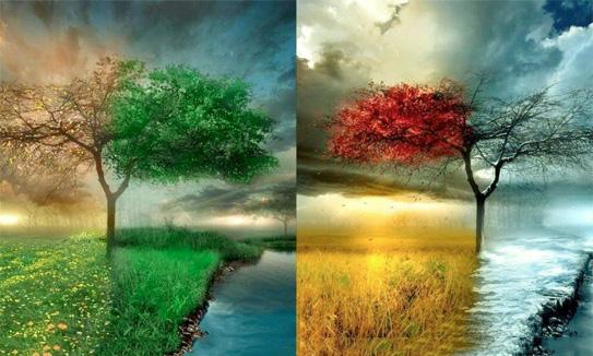 Christian Wallpaper Hd 3d Do Seasons Represent Spiritual Change Barbara Delong