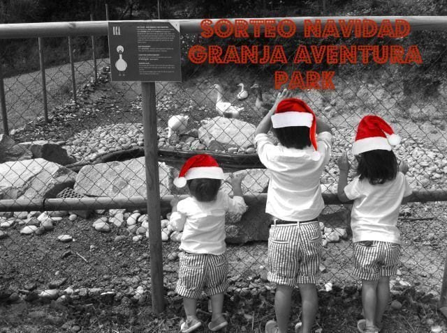 Sorteo Navidad Granja Aventura Park