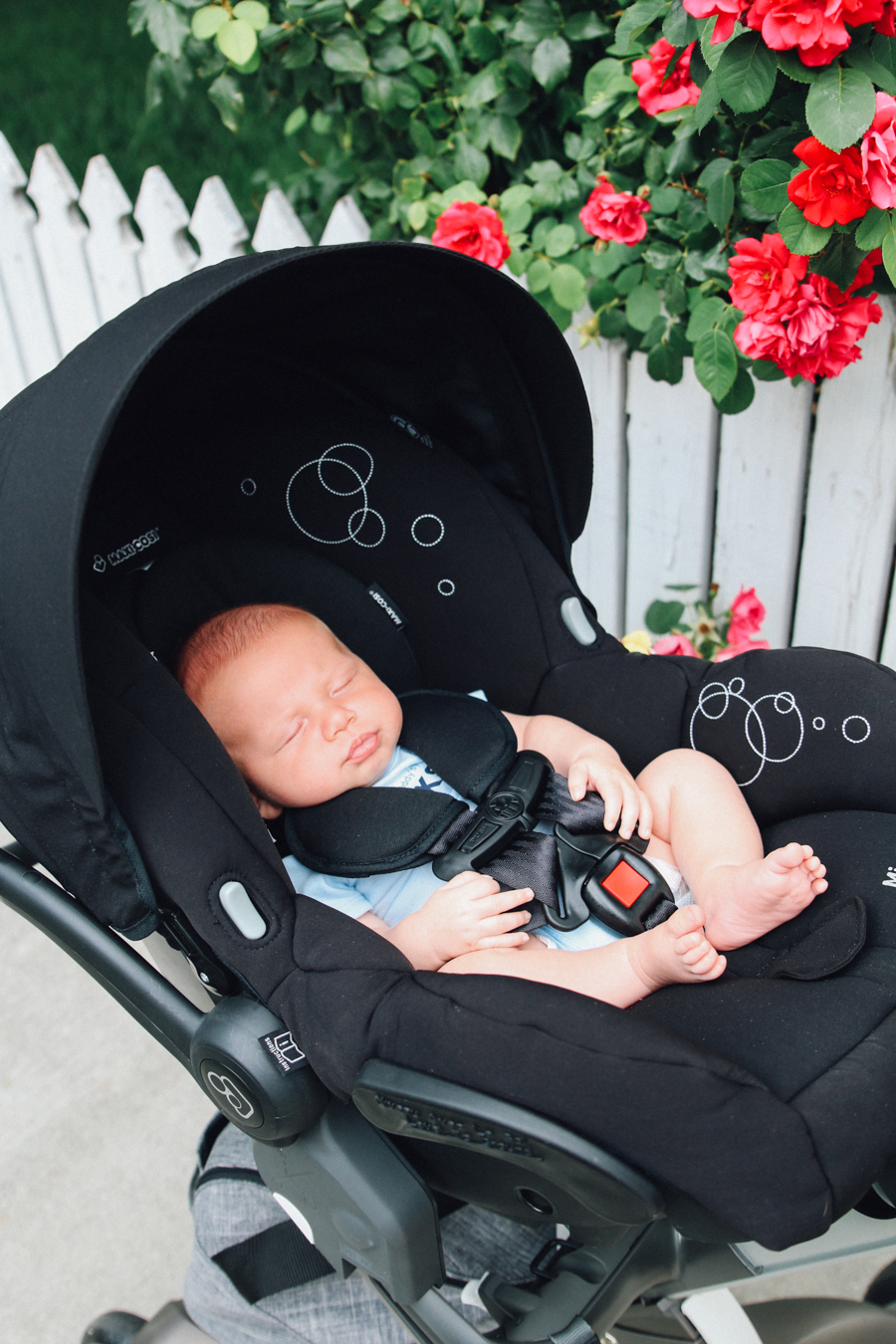 Stokke Maxi Cosi Car Seat Walks With My Loves Barefoot Blonde By Amber Fillerup Clark