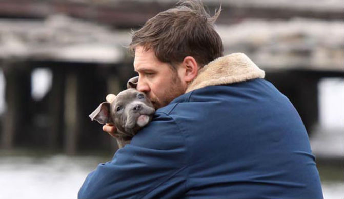Cute Corgi Puppies Wallpaper Tom Hardy Shares His Love Of Dogs In His Own Words Barkpost