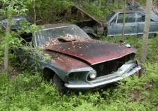 Abandoned Junkyard in Michigan