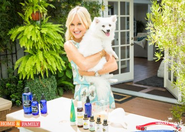 Natural Flea Solutions with Green Living Expert Sophie Uliano