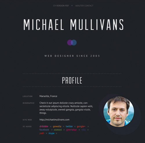 30 Great Examples Of Creative CV Resume Design Web  Graphic - web resume
