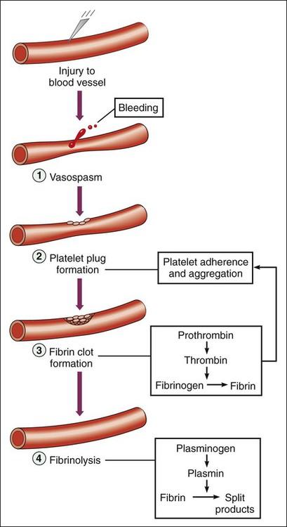 Anticoagulant, Antiplatelet, and Fibrinolytic Drugs Basicmedical Key
