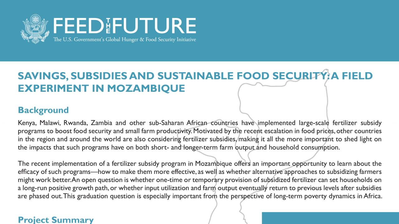 Savings, Subsidies and Sustainable Food Security: A Field Experiment in Mozambique | Feed the ...
