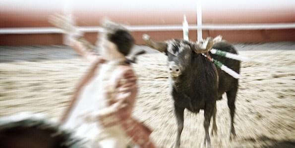 Comissão dos Orçamentos da UE rejeita fim dos subsídios para as touradas