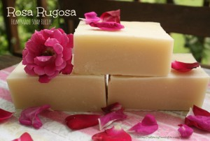 Rosa-Rugosa-Homemade-Soap-Recipe-300x202