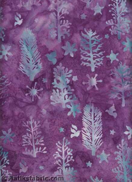 Violet Spruce-Dove-star