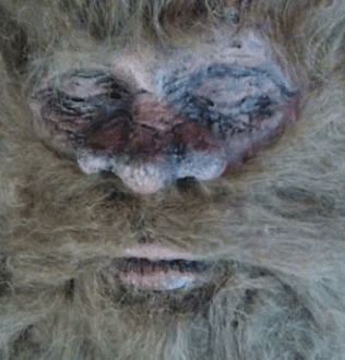 Man Claims He Killed Bigfoot