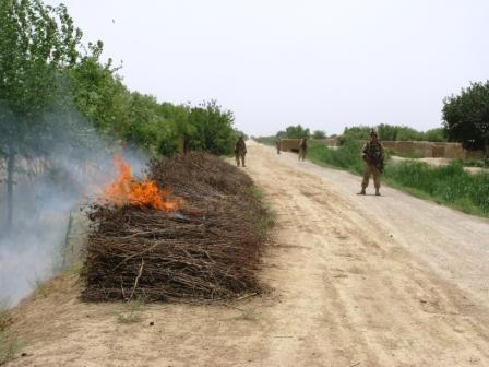 A Marine watches dried poppy burn on a road in Marjah, Afghanistan. The Marines lit in on fire to make it clear that dried poppy, used to hide improvised explosive devices by the Taliban, is not welcome on Marjah's streets.  Dan Lamothe//Staff