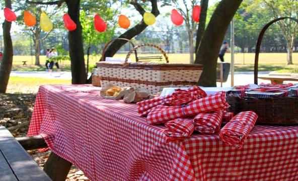 Festa no parque, como organizar?