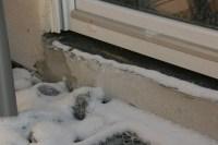 Fensterbnke und Kltebrcken