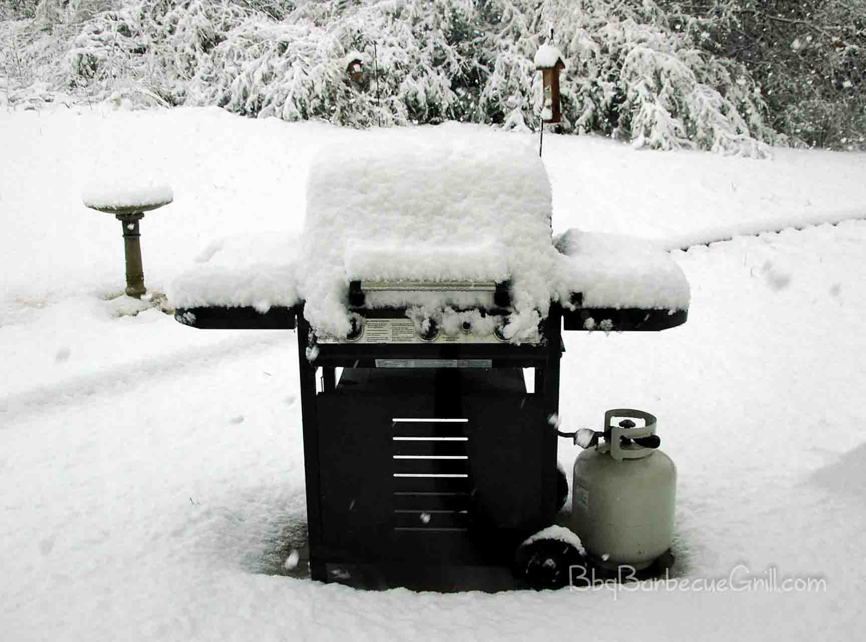 Gas Barbecue Grill Winter Grilling: Perfect Cooking Tips For Winter Barbecue