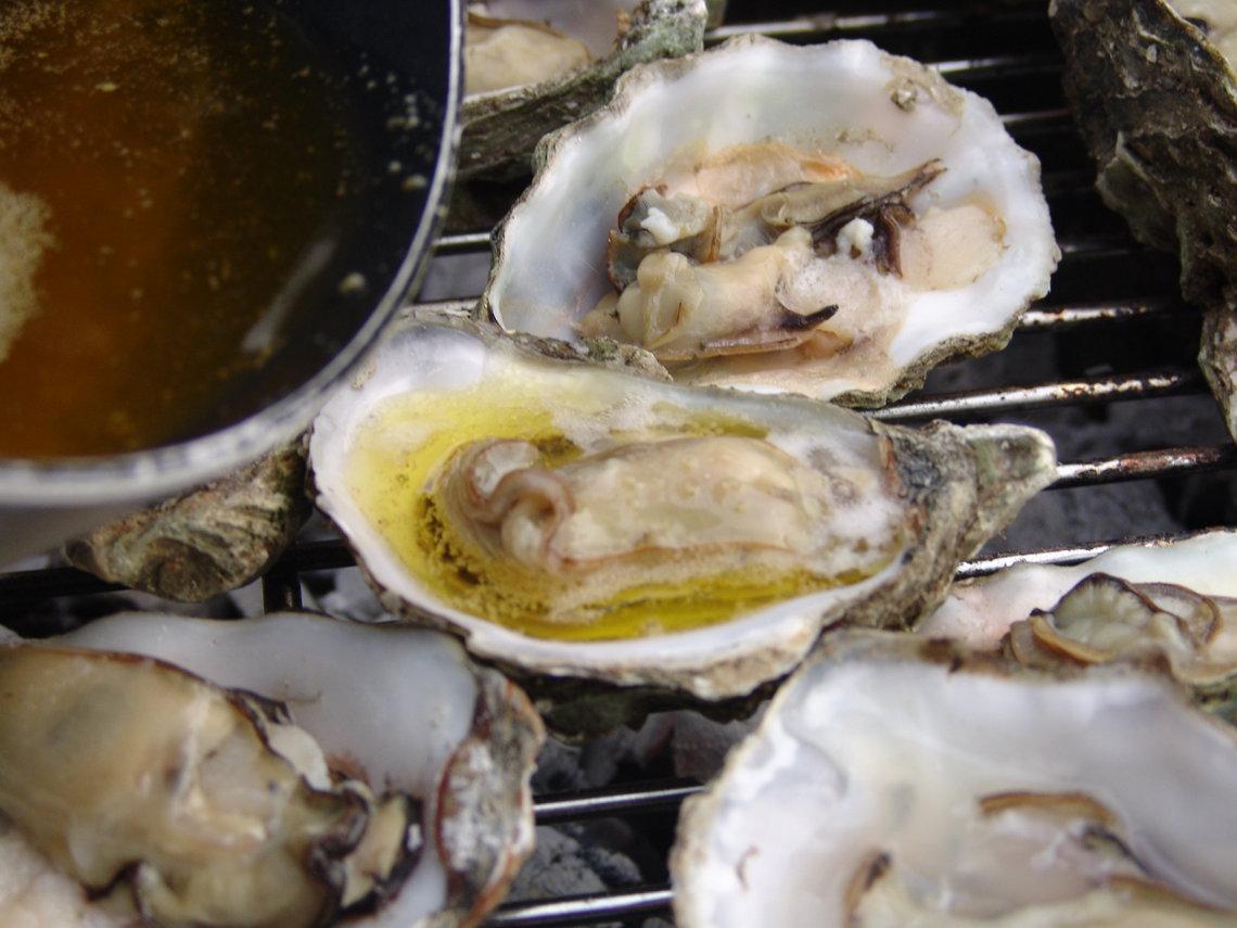 oesters zwanger