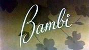 Bambi Pictures Cartoons