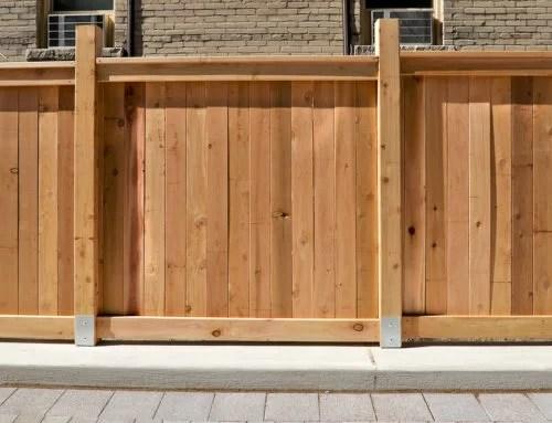 Cedar Vs. Redwood – Which Do You Choose | B.C. Fence