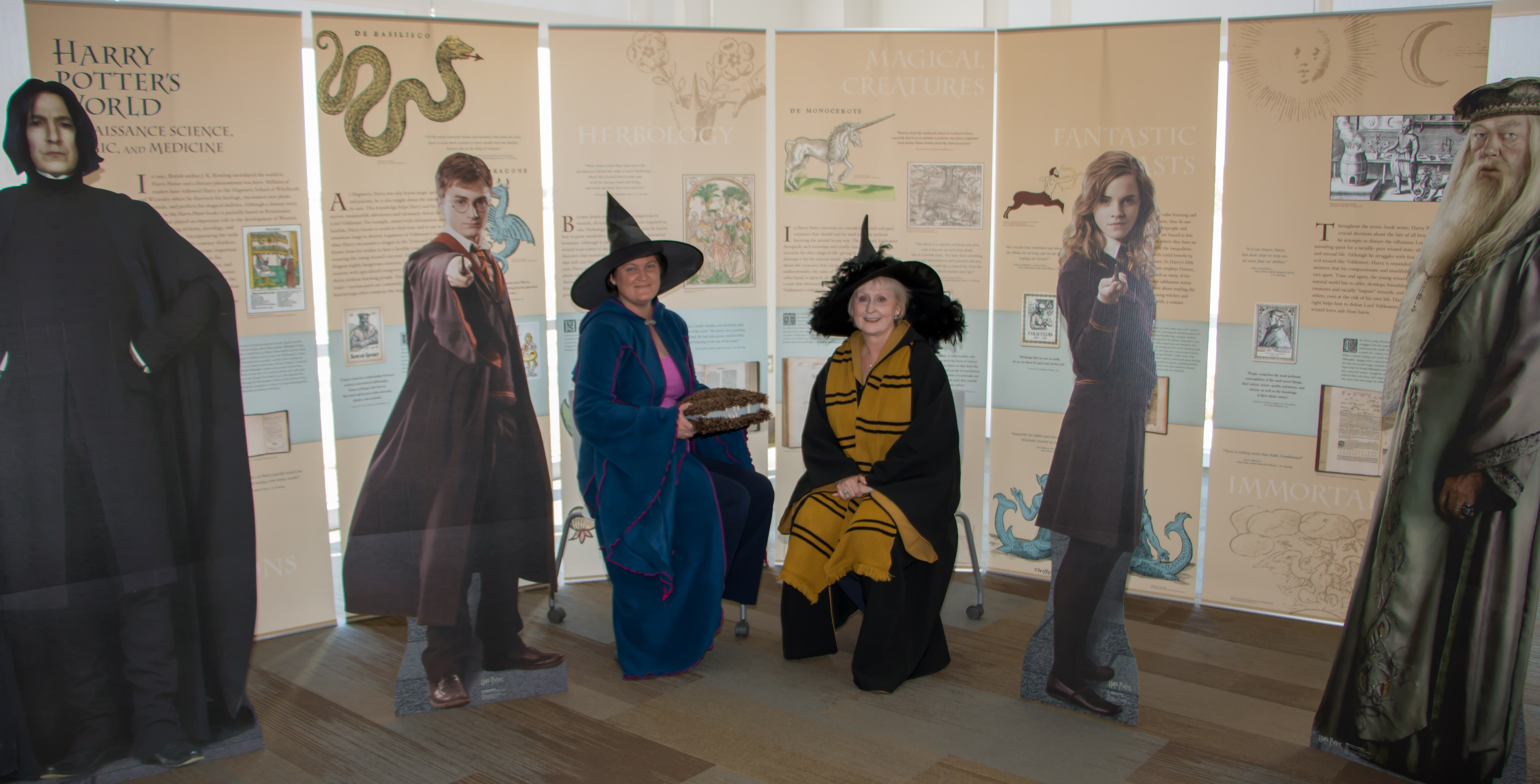 Harry Potter Display Burrell College Of Osteopathic Medicine Health Sciences