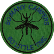 mosquito campers