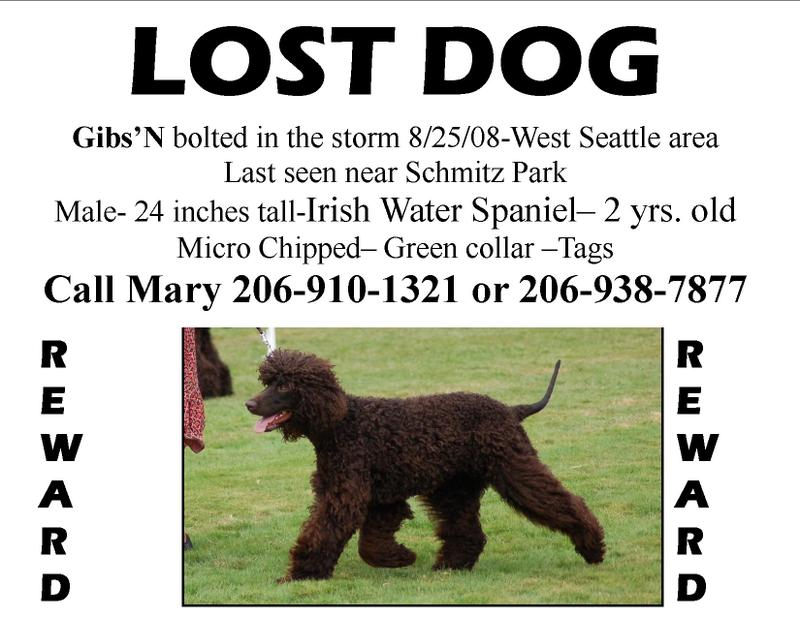 Lost Dog Alert Have You Seen Gibs\u0027N (he\u0027s found)