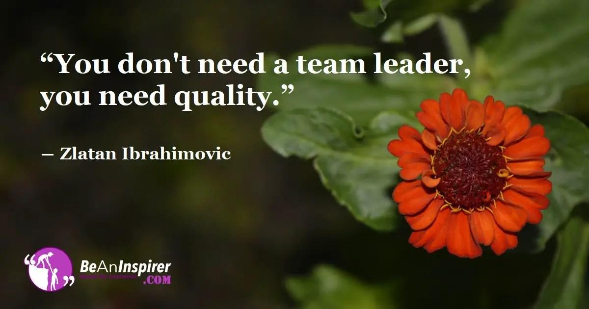 6 Useful Team Leader Qualities BeAnInspirer