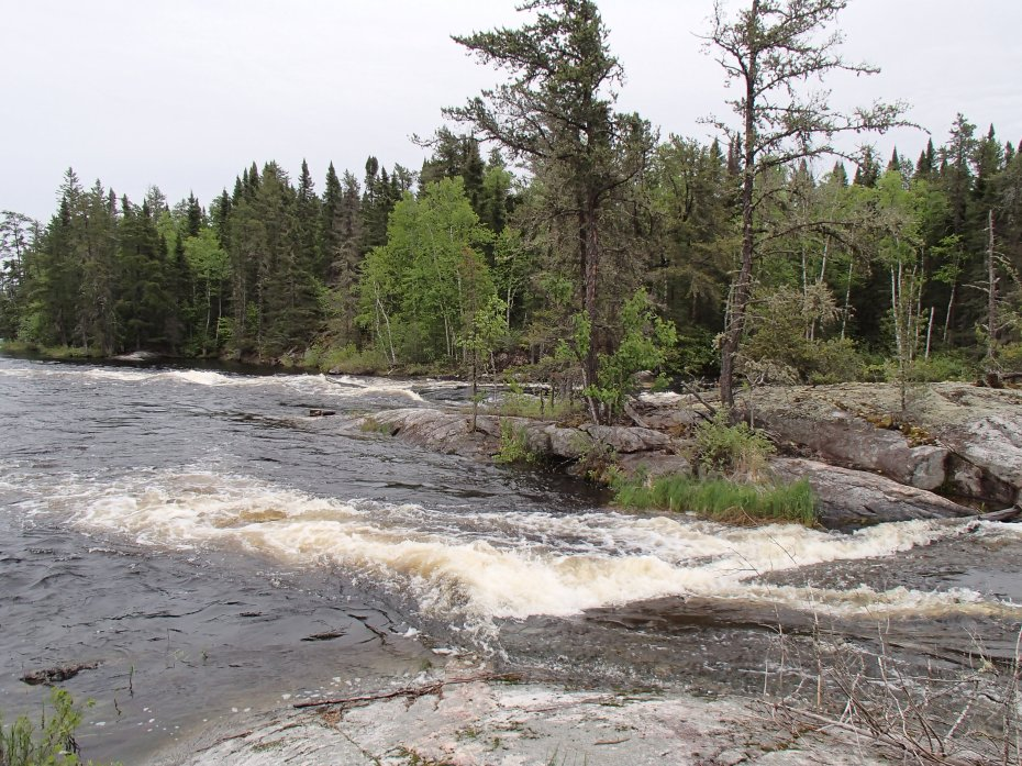 Rapids on the Cat River