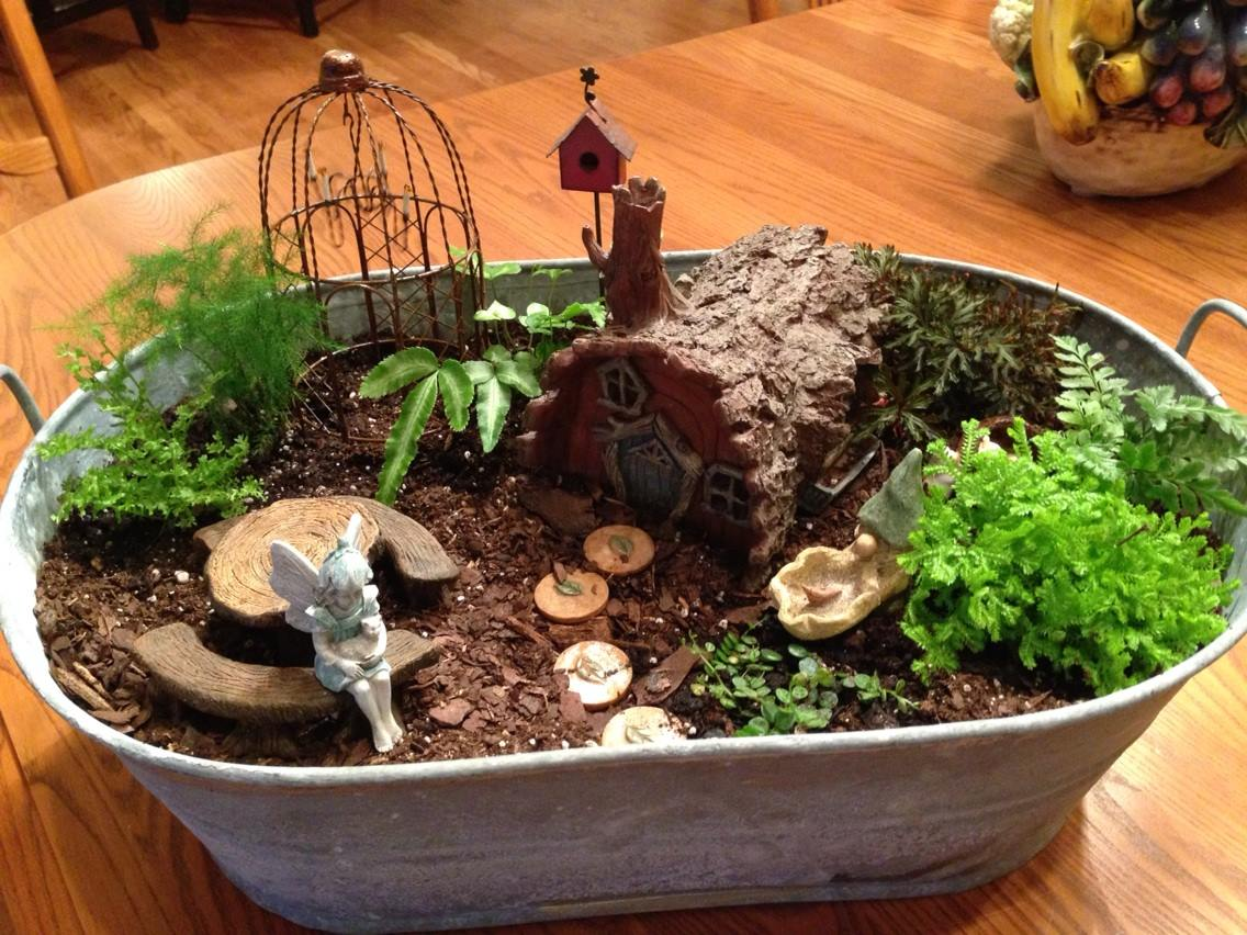 Cheery Fairy Gardens Gardener Succulent Fairy Garden Pots Succulent Fairy Garden Video Magic garden Succulent Fairy Gardens