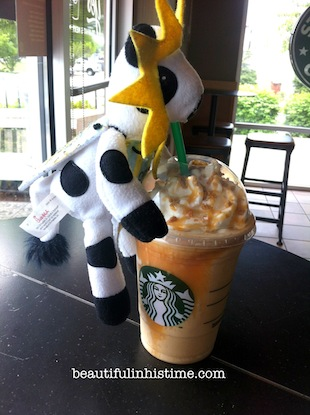 22 chickfila cow at starbucks