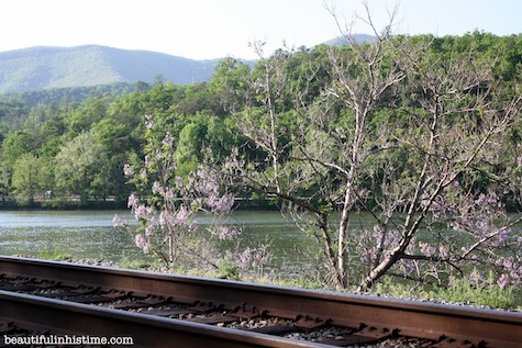 James River Virginia Appalachian Trail Snowden Dam Railroad Tracks Virginia Vacation