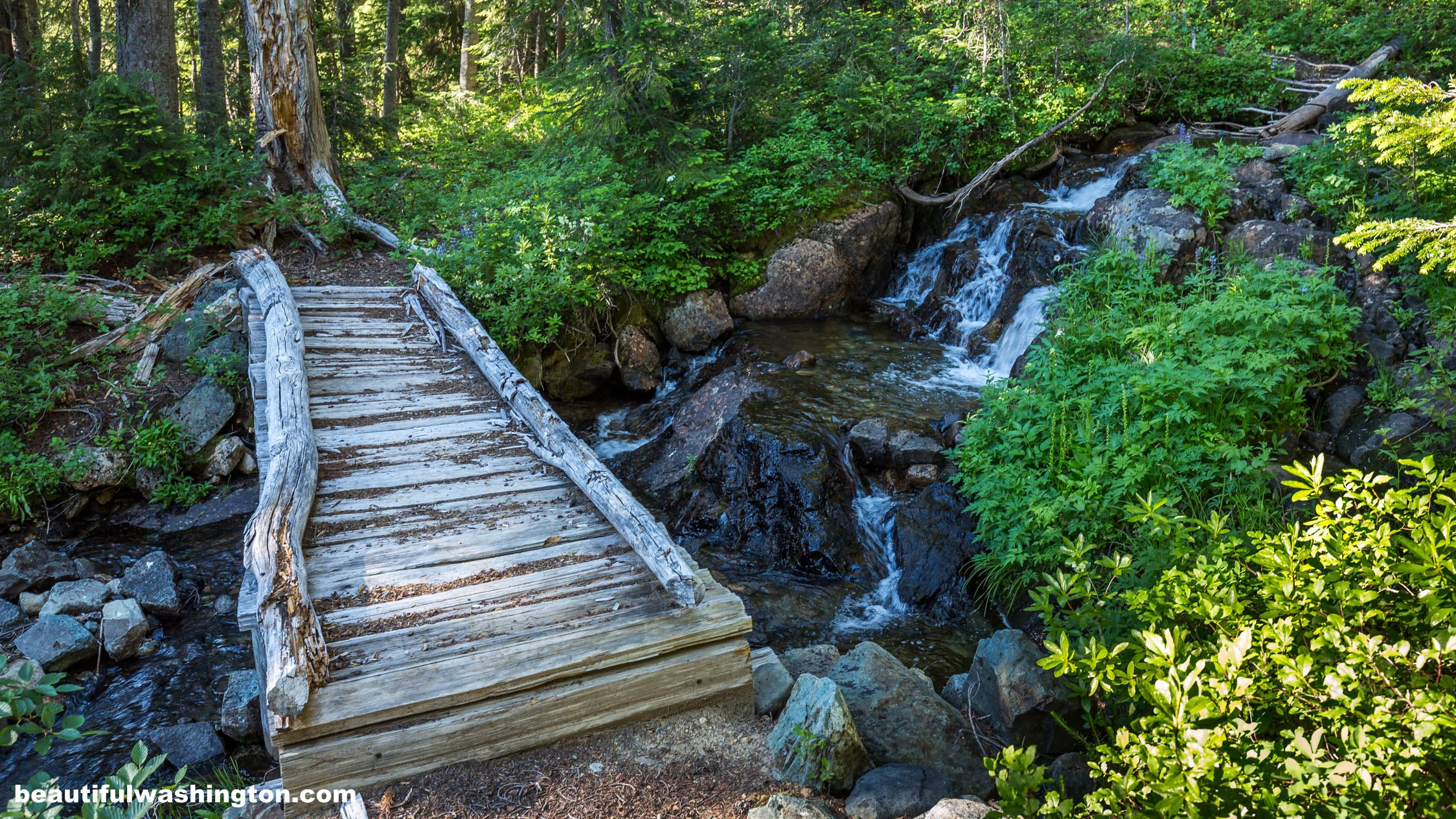 Beautiful Fall Location Wallpapers Tipsoo Lake Naches Peak Loop Trail