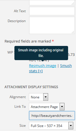 smush images before inserting into post