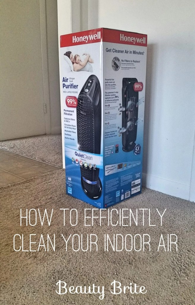 How to Efficiently Clean Your Indoor Air