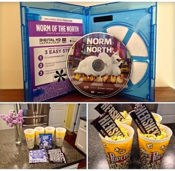 Norm of the North DVD from Lionsgate Entertainment, Inc.