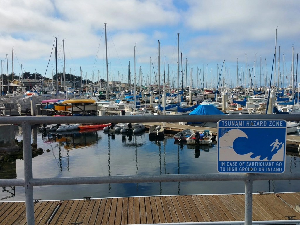 The Marina at Fisherman's Wharf